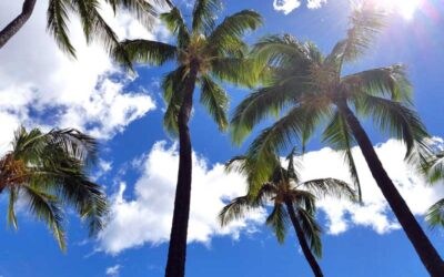 Condos for sale at Nani Kai Hale in Kihei for Maui Living or Investment
