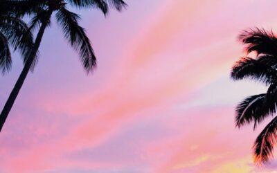 Hawaii Oceanfront Condo Living at Menehune Shores on Maui