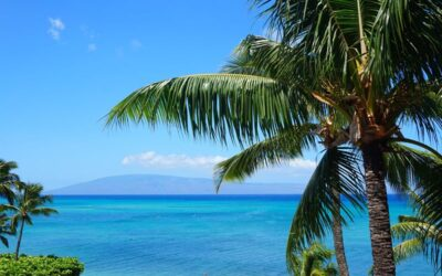Made the Move to South Maui – Here are Top Things To Do in Kihei